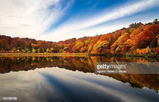 autumn bend - 八幡平市 ストックフォトと画像