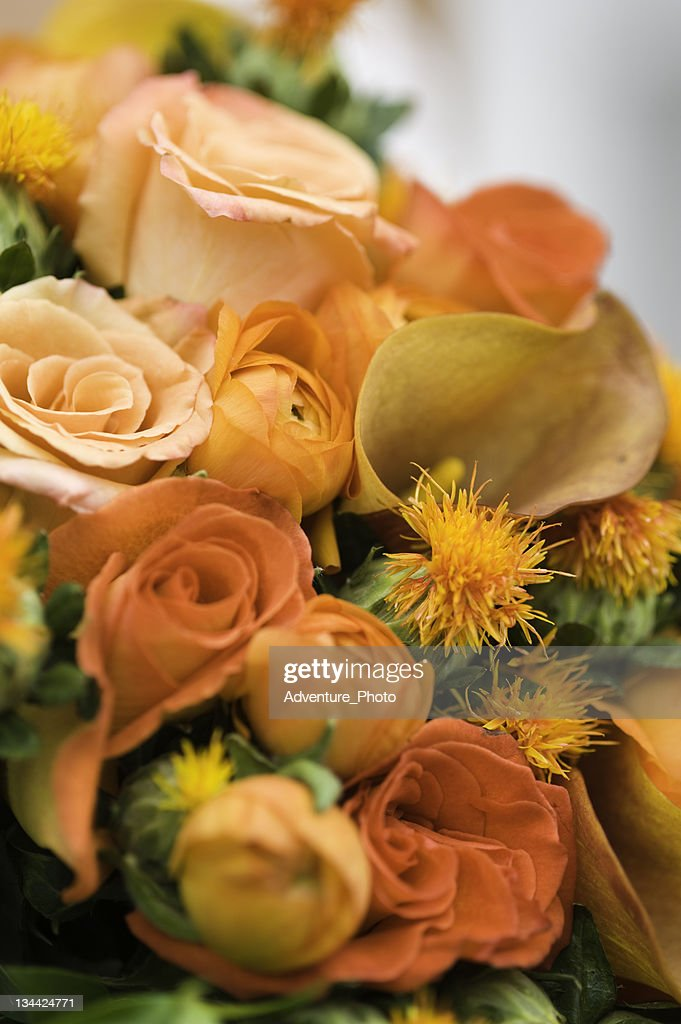 Autumn Bride's Bouquet of Colorful Orange Flowers : Stockfoto