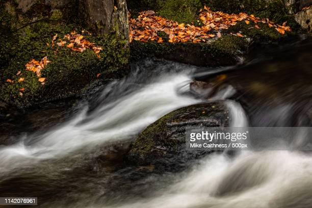 autumn cascade - mike caithness stock pictures, royalty-free photos & images
