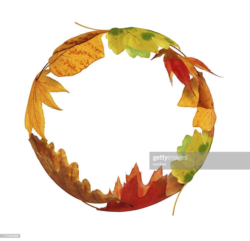 Autumn Circle : Stock Photo