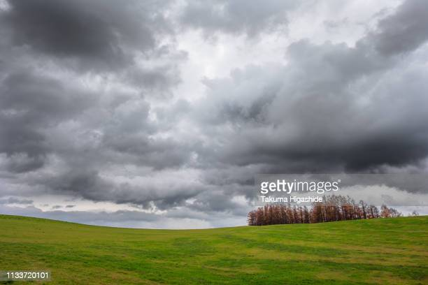 autumn clouds - overcast stock pictures, royalty-free photos & images