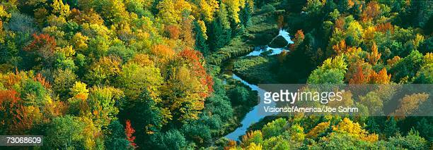 """Autumn color at Porcupine State Park, Michigan's Upper Peninsula, Michigan"""