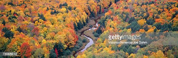 """autumn color at porcupine state park, michigan's upper peninsula, michigan"" - parque estatal de porcupine mountains wilderness fotografías e imágenes de stock"