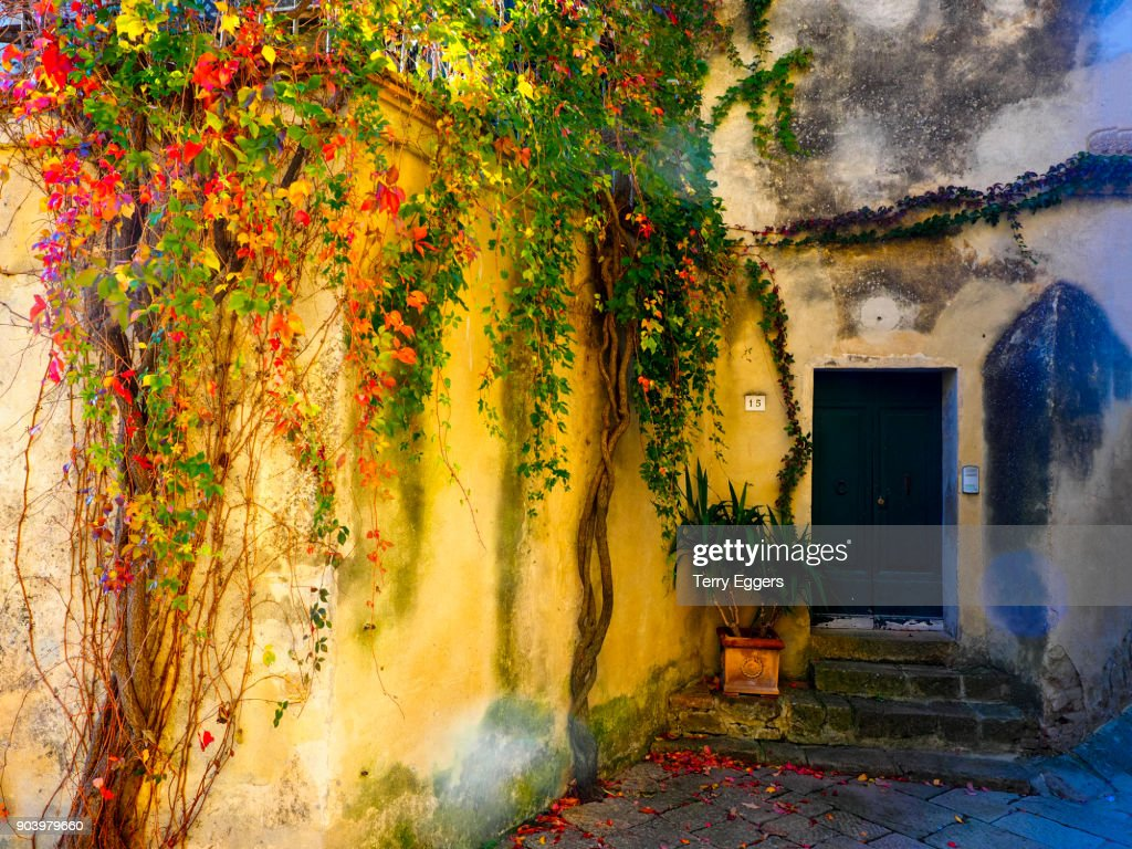 Autumn Color On The Walls Of Town Stock Photo | Getty Images