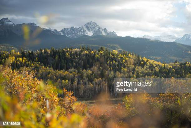 autumn colorado scene - aspen colorado stock photos and pictures