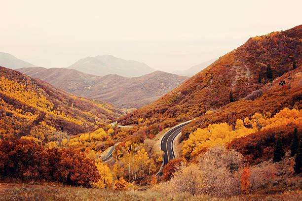 Autumn colored trees along mountain road