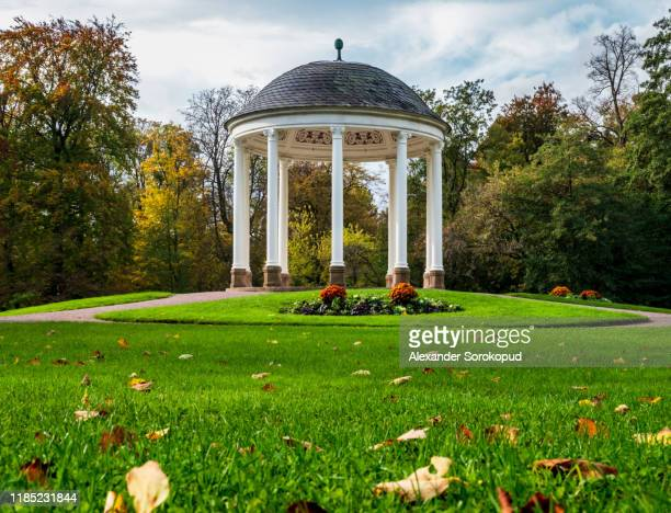 autumn colorful leaves on green grass in public park, strasbourg - pavilion stock pictures, royalty-free photos & images