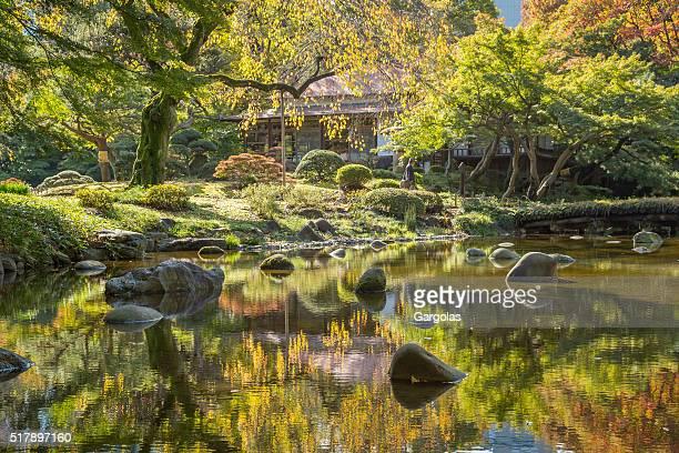 Autumn colors at Japanese park Koishikawa Korakuen, Tokyo