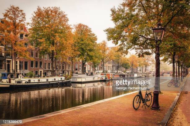 autumn colors in amsterdam, holland - amsterdam stock pictures, royalty-free photos & images