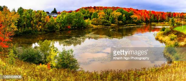 autumn colors in canada - moncton stock photos and pictures