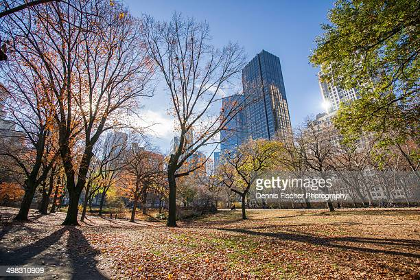 autumn colors in central park nyc - national_historic_landmark stock pictures, royalty-free photos & images