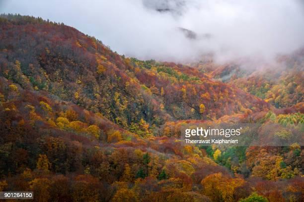 Autumn colors in Hakkoda, Aomori Prefecture, Japan