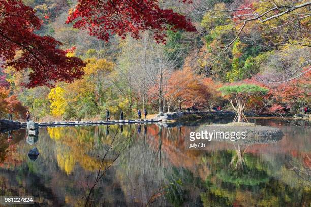 Autumn Colors in Korea