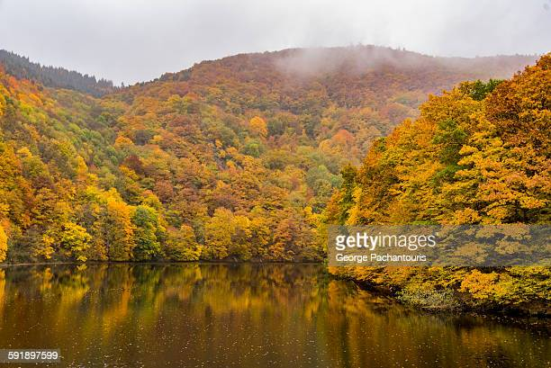 Autumn colors in lake