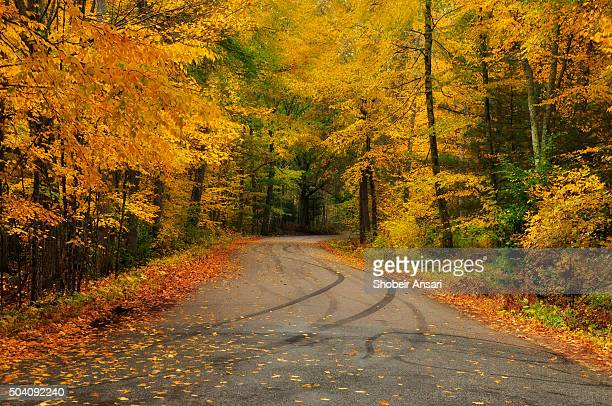 Autumn colors in rural roads of Rhode Island