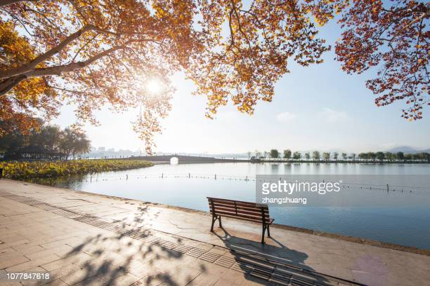 autumn colors in the west lake,hangzhou,china - west lake hangzhou stock pictures, royalty-free photos & images
