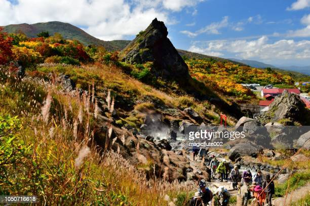 autumn colors of mt kurikoma in northeastern japan - iwate prefecture stock photos and pictures