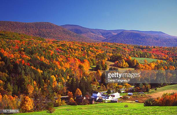 autumn colors - massachusetts stock pictures, royalty-free photos & images