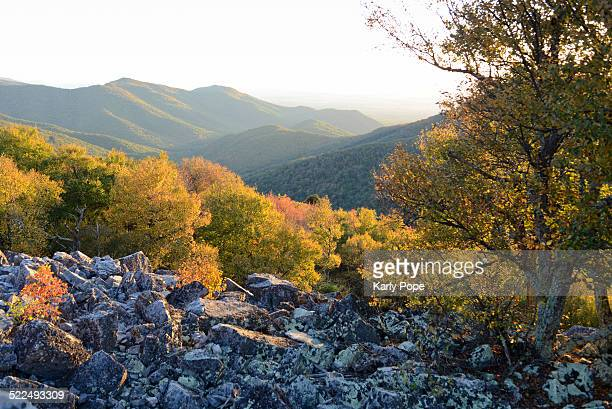 autumn colors - skyline drive virginia stock photos and pictures