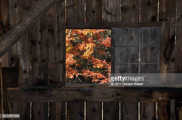 autumn colors - sturbridge stock photos and pictures