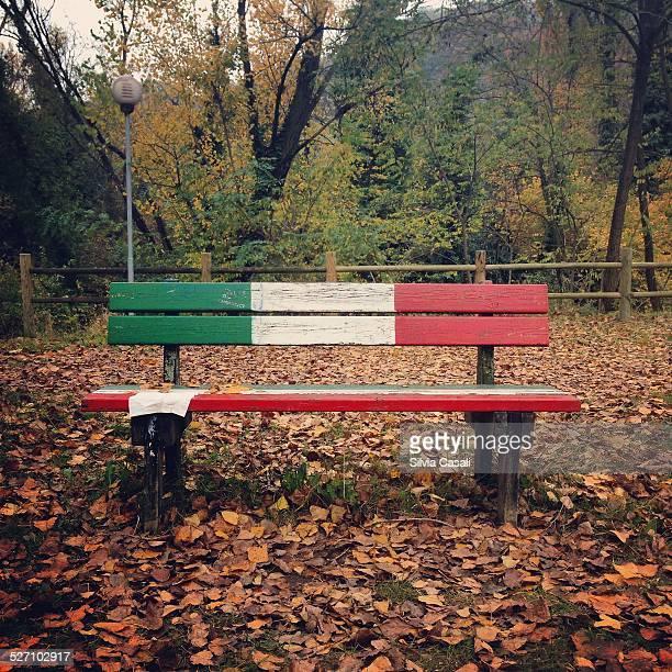 autumn colors - silvia casali bildbanksfoton och bilder