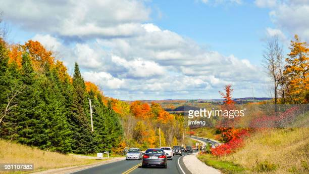 autumn colors - barrie stock pictures, royalty-free photos & images
