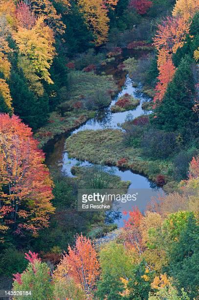 autumn colors, porcupine mountains wilderness - parque estatal de porcupine mountains wilderness fotografías e imágenes de stock