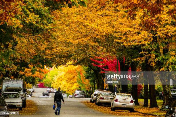 Autumn Colors Transformation on Street in Vancouver BC Canada