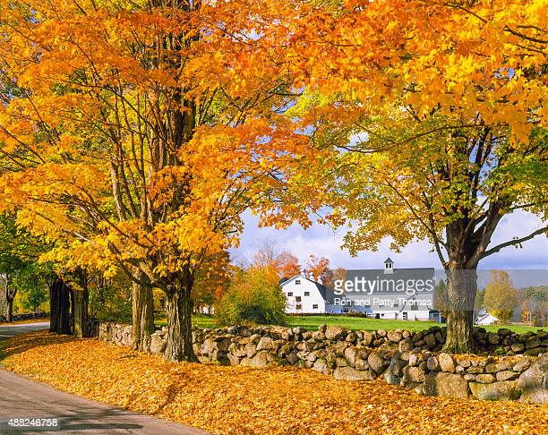 autumn colors with farm in the white mountains, nh - new hampshire stock pictures, royalty-free photos & images