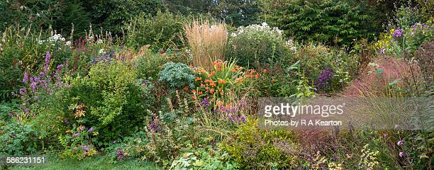 Autumn colour in an English country garden