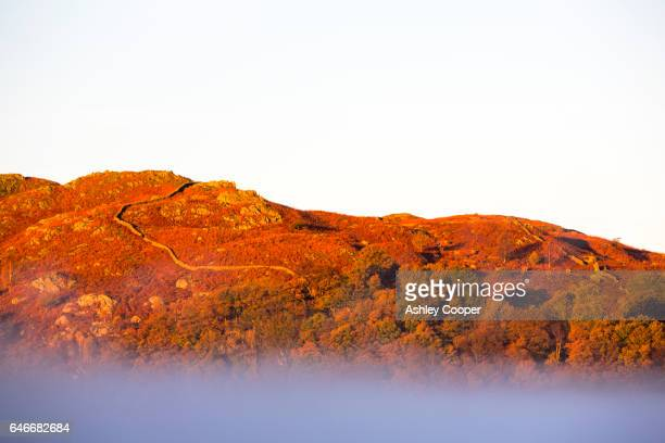 autumn colour on loughrigg above ambleside, lake district, uk, with morning mist. - loughrigg fells - fotografias e filmes do acervo