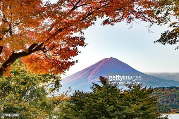 autumn colour - fuji hakone izu national park stock photos and pictures