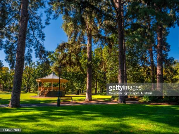 autumn colours beginning to emerge in rosalind park, city of bendigo, central victoria, australia. - bendigo stock pictures, royalty-free photos & images