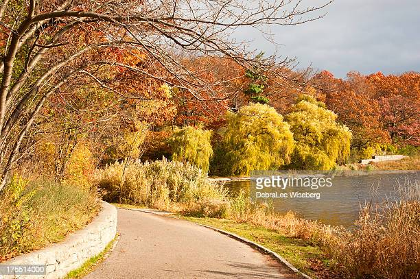 秋の色合いの公園