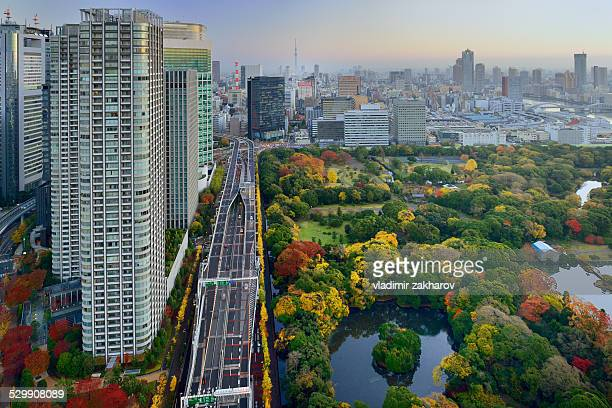Autumn colours of Tokyo at sunrise