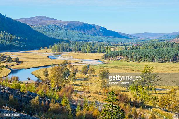 autumn colours, - braemar stock pictures, royalty-free photos & images