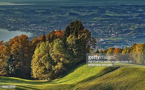 autumn colours - natur photos et images de collection