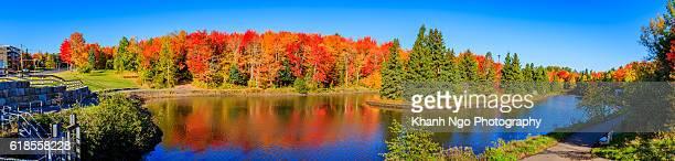 autumn colours - moncton stock photos and pictures