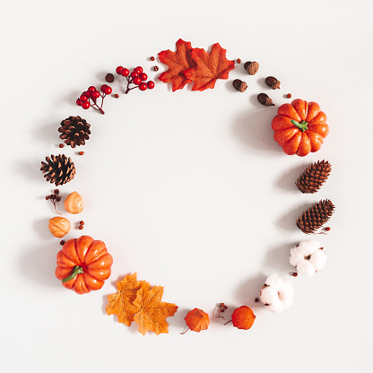 Autumn composition. Wreath made of pumpkins, flowers, leaves on gray background. Autumn, fall, halloween, thanksgiving day concept. Flat lay, top view, copy space, square 1171916975