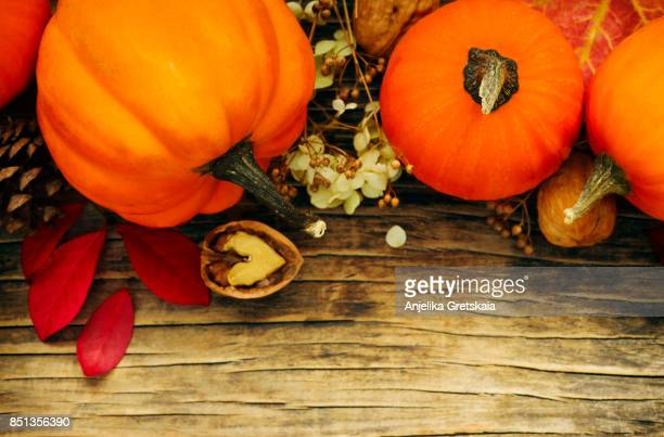 Autumn concept with pumpkins and fall leaves. Autumn composition