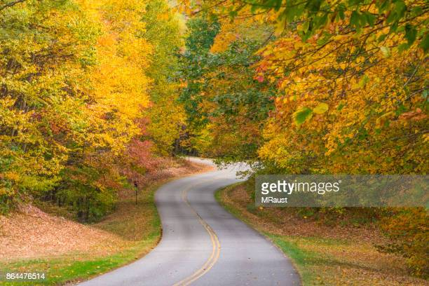 autumn country road - tennessee stock pictures, royalty-free photos & images