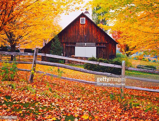 Autumn country side in Vermont