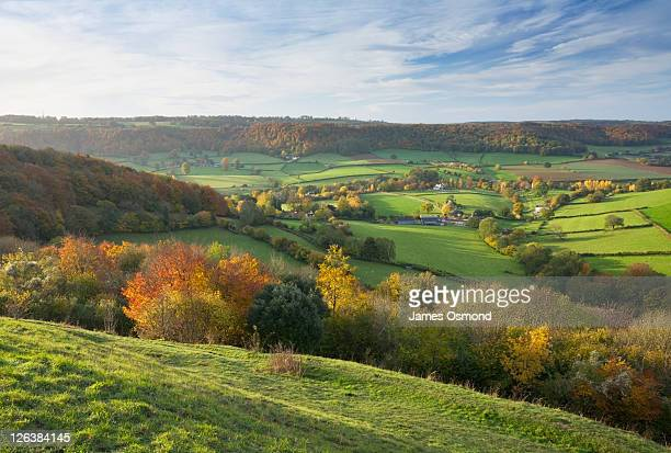 autumn countryside from uley bury. the cotswolds. gloucestershire. england. uk. - gloucestershire fotografías e imágenes de stock