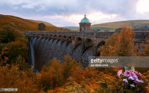 autumn, craig goch, rhayader, elan valley, wales - valley stock pictures, royalty-free photos & images