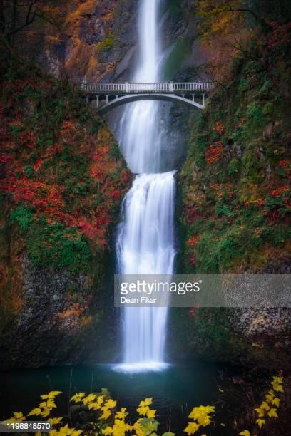autumn day at multnomah falls - multnomah falls stock pictures, royalty-free photos & images