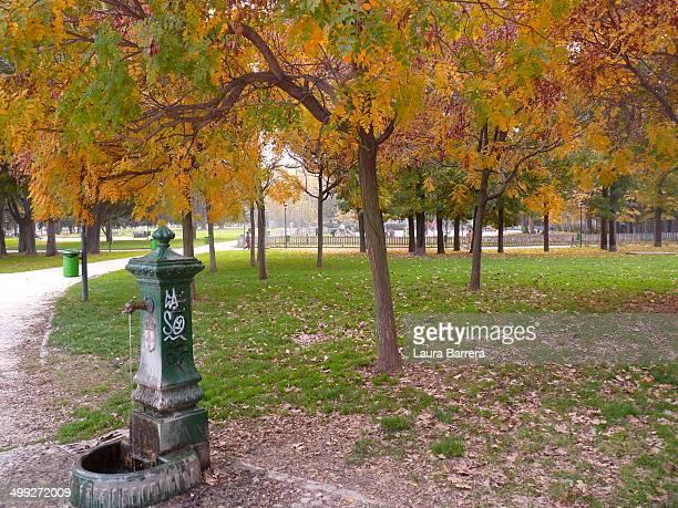 Autumn day in Milan