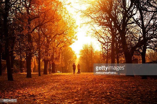 Autumn day in Schonbrunn Park