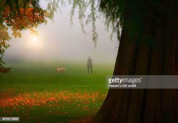A Autumn day On hampstead heath London Uk