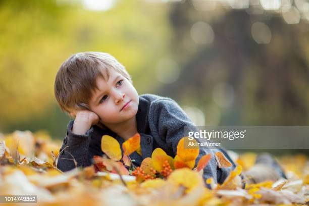 autumn day - one boy only stock pictures, royalty-free photos & images