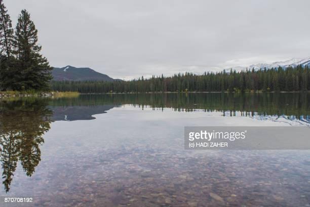 Autumn day reflections at a lake | Jasper National Park | Alberta | Canada